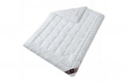 Одеяло для лета Air Dream Premium